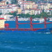 10,700 DWT GEARED SINGLEDECK MPP / GENERAL CARGO VESSEL FOR SALE