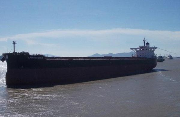 Amphitrite bulker