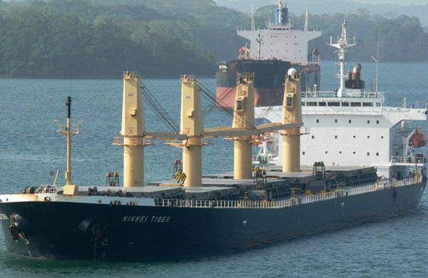 Nikkei Tiger bulker